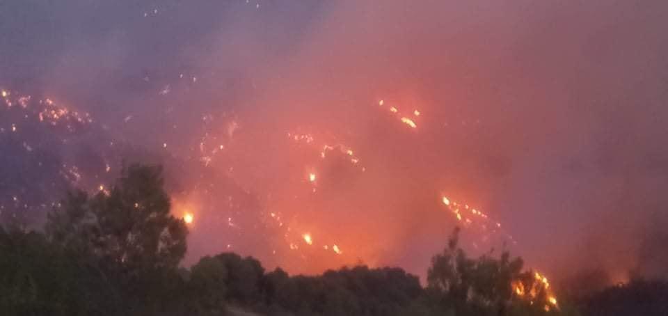 حريق غابة