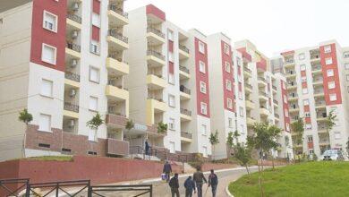 صورة عملية ضخمة لتوزيع السكنات مطلع نوفمبر القادم