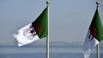 صورة مدير المعهد الفرنسي للعلاقات الدولية بباريس: تصريحات ماكرون بشأن الجزائر خطيرة