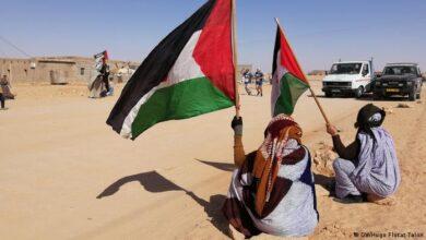 صورة البرلمان الأوروبي مطالب بعدم الاعتراف بالضم غير القانوني من قبل المغرب للصحراء الغربية